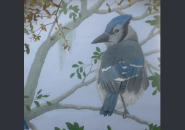 A closeup view of the bluejay from the mural.